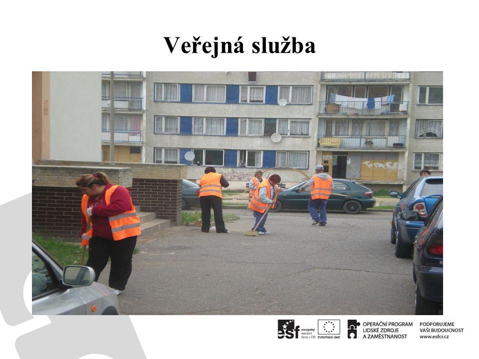 Veřejná služba
