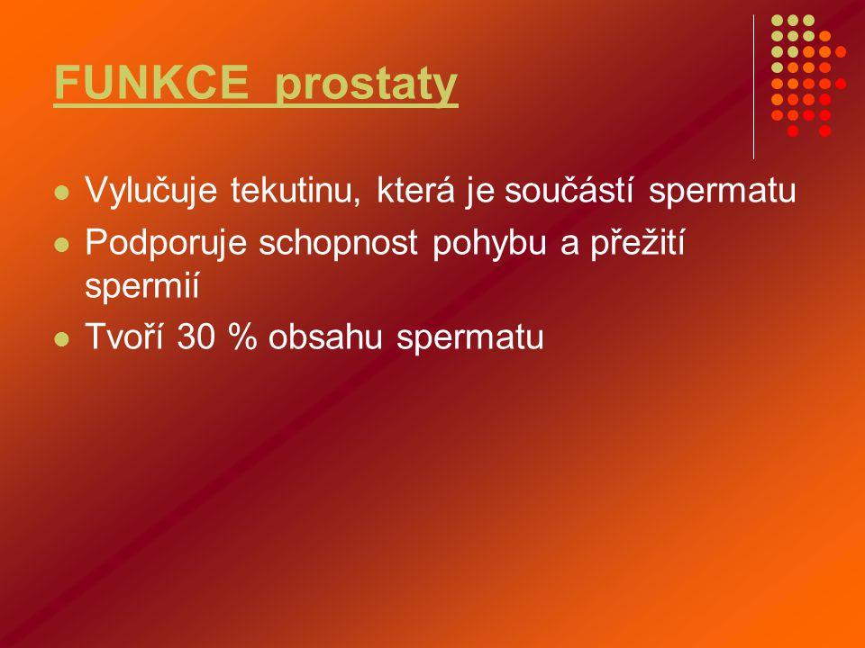 FUNKCE prostaty Vylučuje tekutinu, která je součástí spermatu