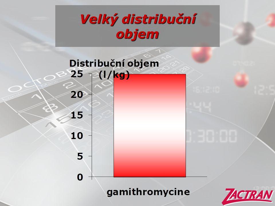 Velký distribuční objem
