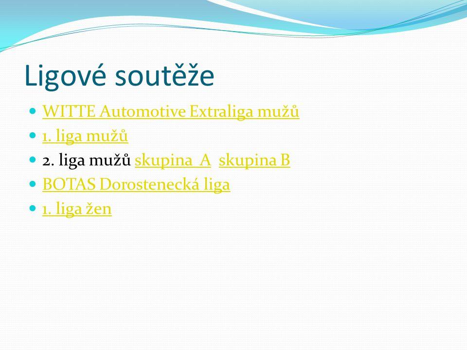 Ligové soutěže WITTE Automotive Extraliga mužů 1. liga mužů