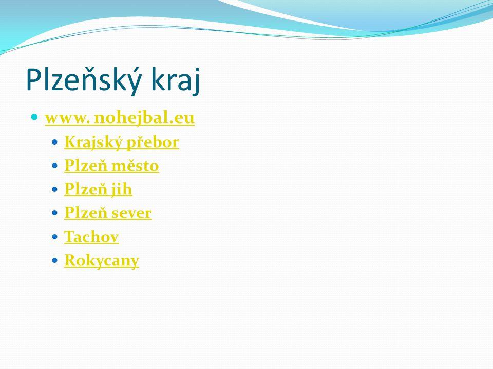 Plzeňský kraj www. nohejbal.eu Krajský přebor Plzeň město Plzeň jih