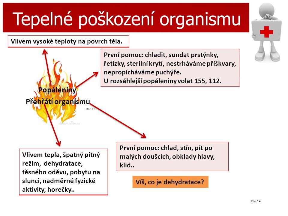 Tepelné poškození organismu