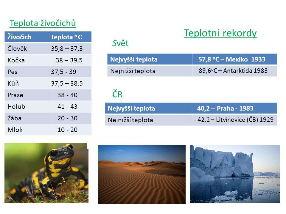 Teplotní rekordy Teplota živočichů Svět ČR Živočich Teplota o C Člověk