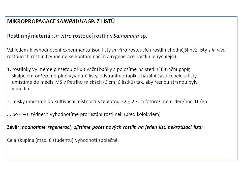 Mikropropagace Sainpaulia sp. z listů