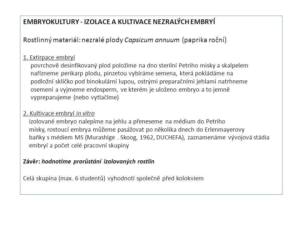 Embryokultury - Izolace a kultivace nezralých embryí