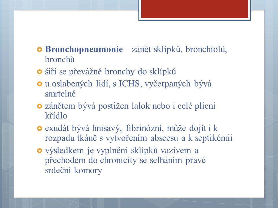 Bronchopneumonie – zánět sklípků, bronchiolů, bronchů