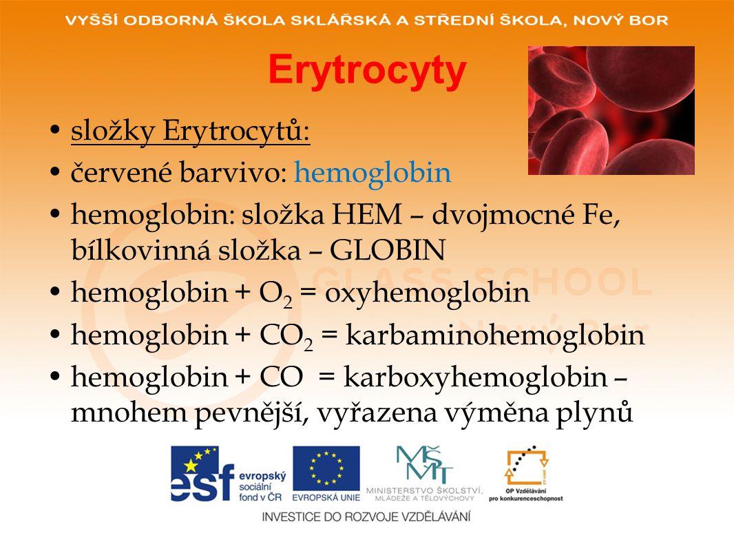 Erytrocyty složky Erytrocytů: červené barvivo: hemoglobin
