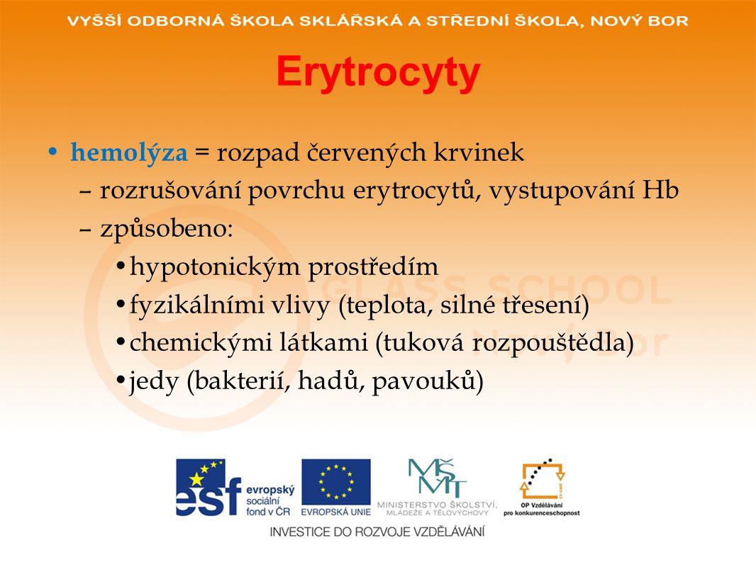 Erytrocyty hemolýza = rozpad červených krvinek