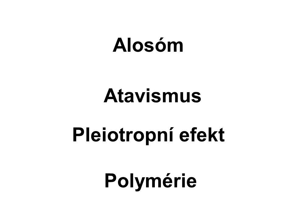 Alosóm Atavismus Pleiotropní efekt Polymérie