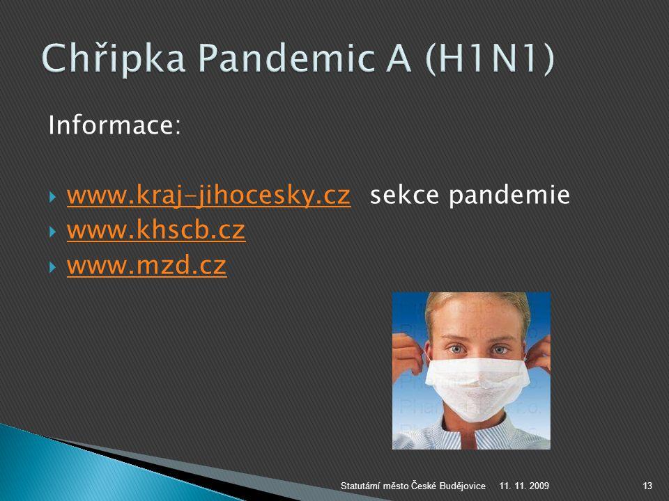 Chřipka Pandemic A (H1N1)