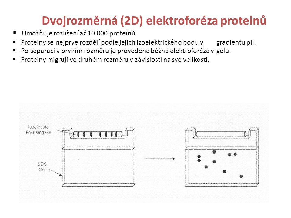 Umožňuje rozlišení až 10 000 proteinů.