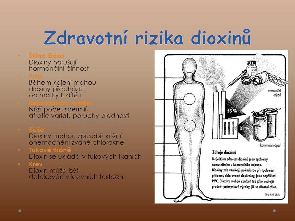 Zdravotní rizika dioxinů