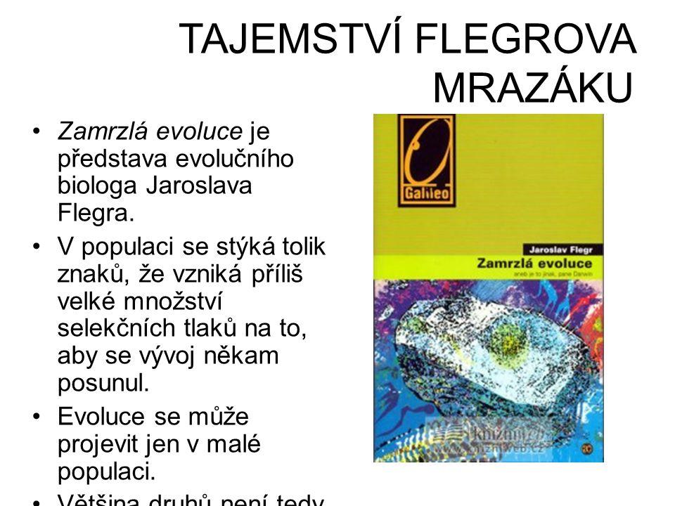 TAJEMSTVÍ FLEGROVA MRAZÁKU