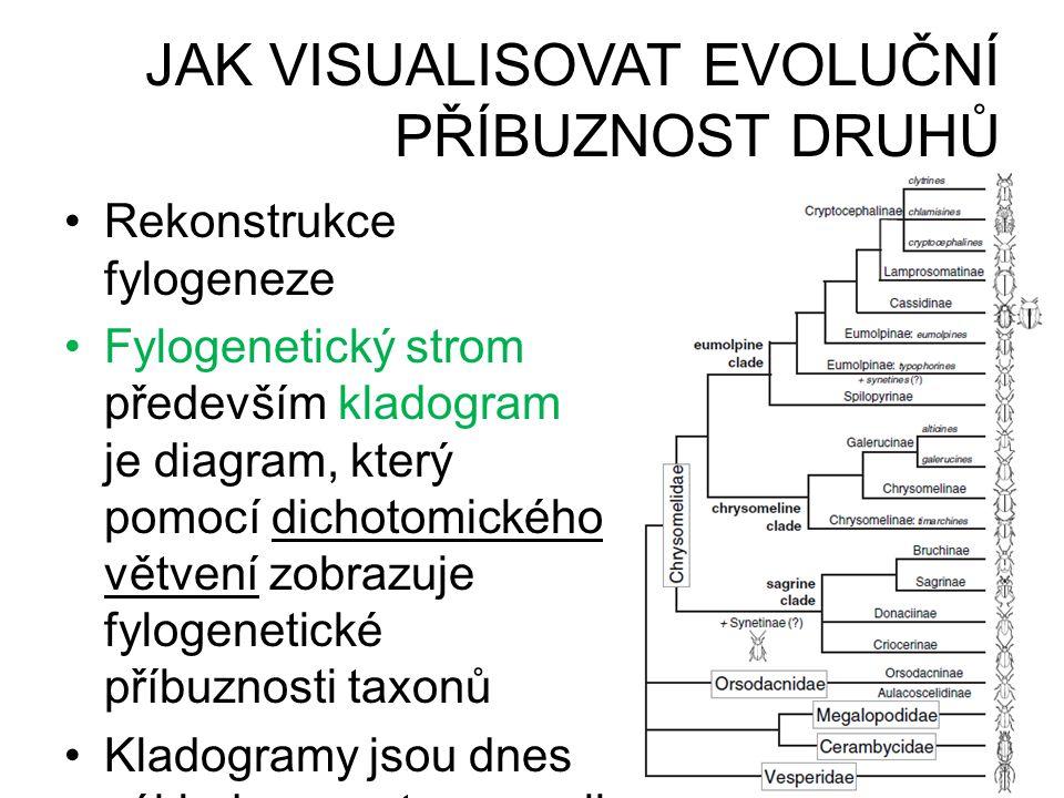 JAK VISUALISOVAT EVOLUČNÍ PŘÍBUZNOST DRUHŮ
