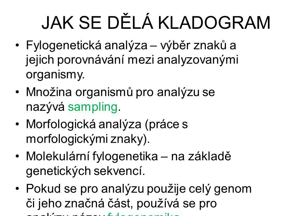 JAK SE DĚLÁ KLADOGRAM Fylogenetická analýza – výběr znaků a jejich porovnávání mezi analyzovanými organismy.