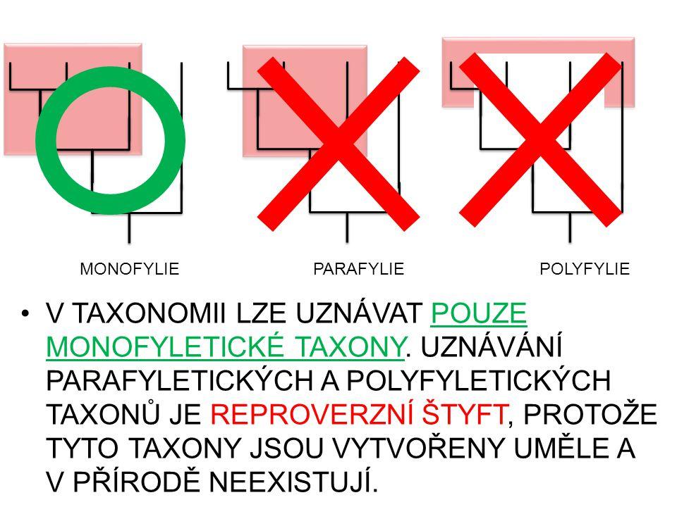 V TAXONOMII LZE UZNÁVAT POUZE MONOFYLETICKÉ TAXONY