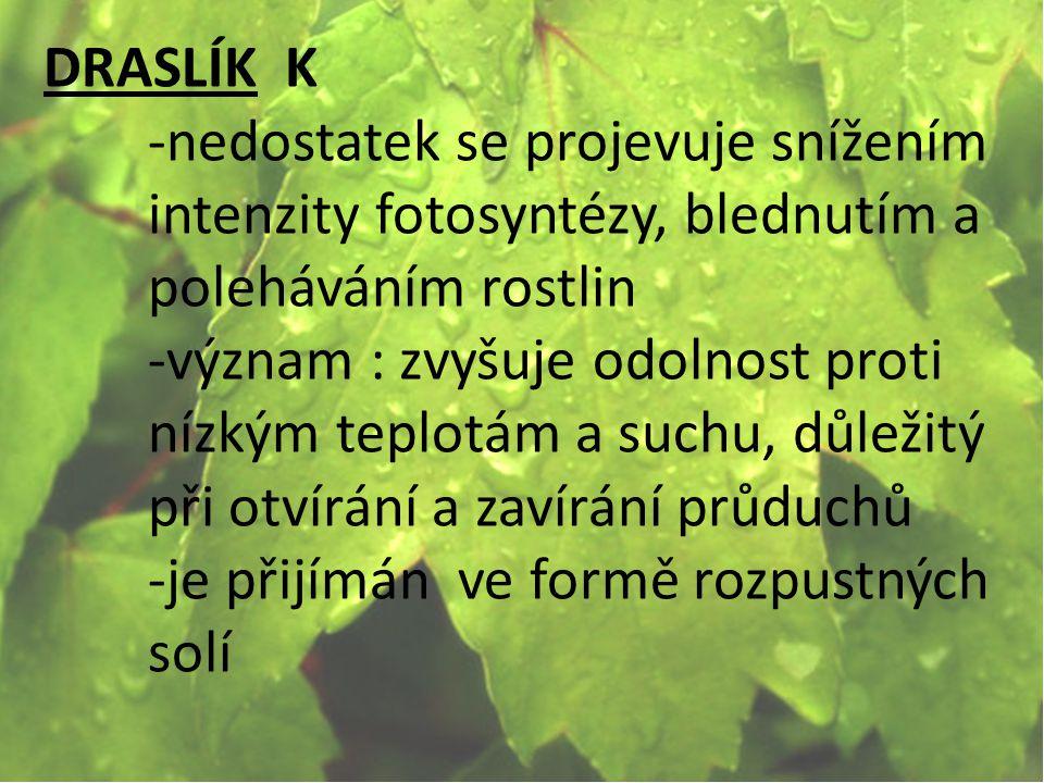 DRASLÍK K -nedostatek se projevuje snížením intenzity fotosyntézy, blednutím a poleháváním rostlin.