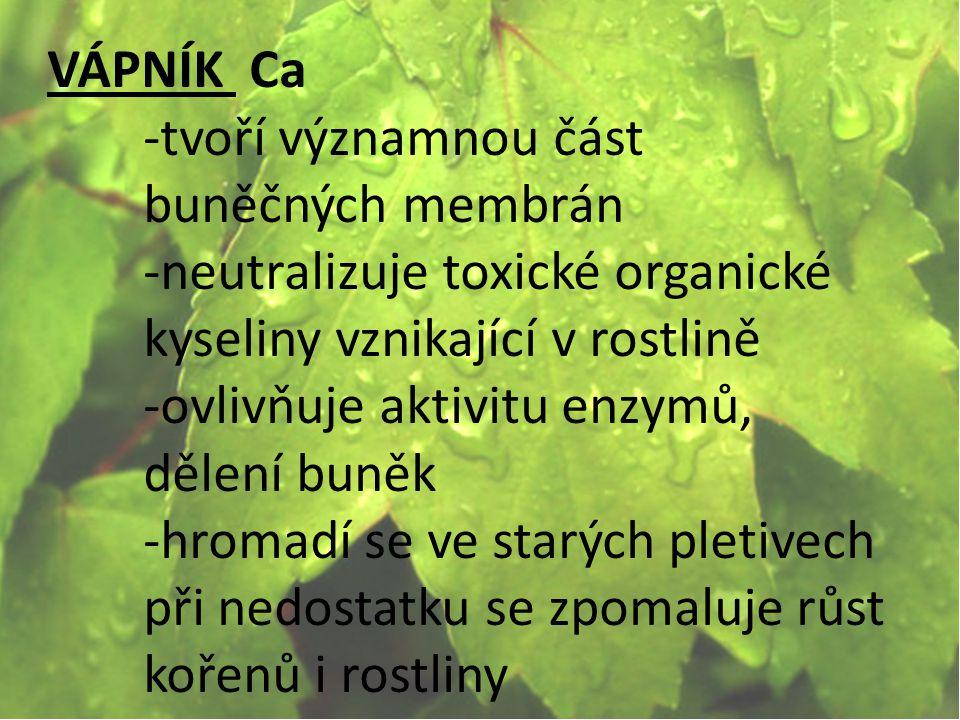 VÁPNÍK Ca -tvoří významnou část buněčných membrán. -neutralizuje toxické organické kyseliny vznikající v rostlině.