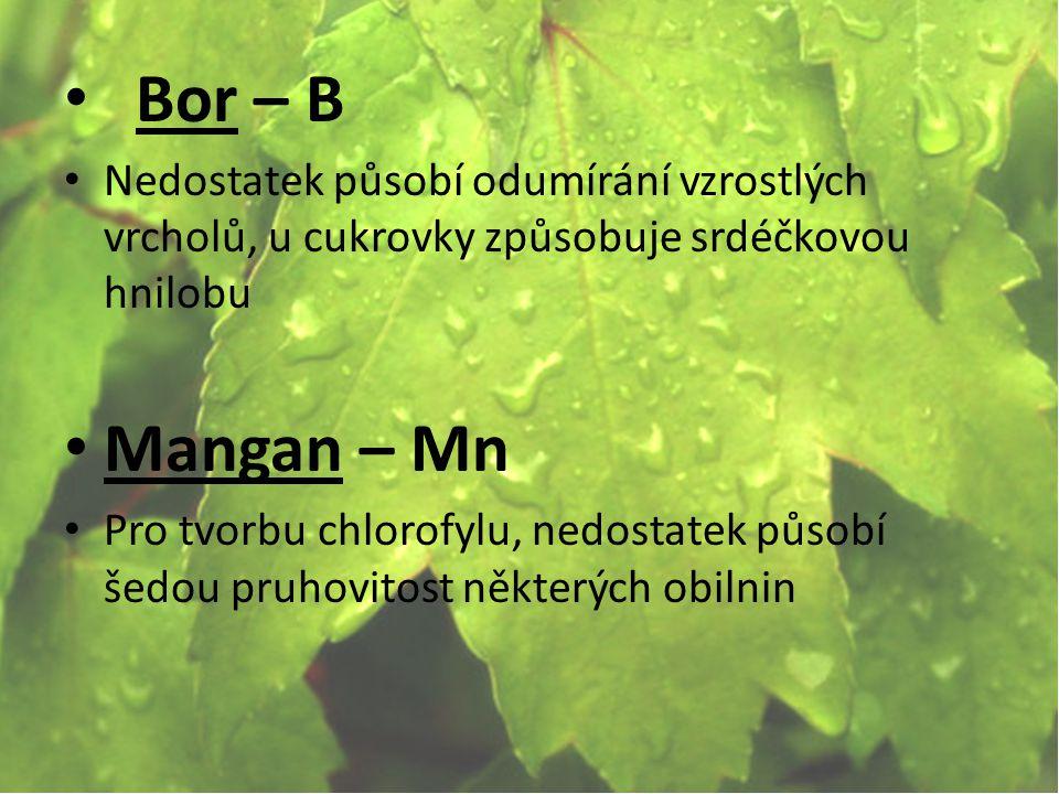 Bor – B Nedostatek působí odumírání vzrostlých vrcholů, u cukrovky způsobuje srdéčkovou hnilobu. Mangan – Mn.