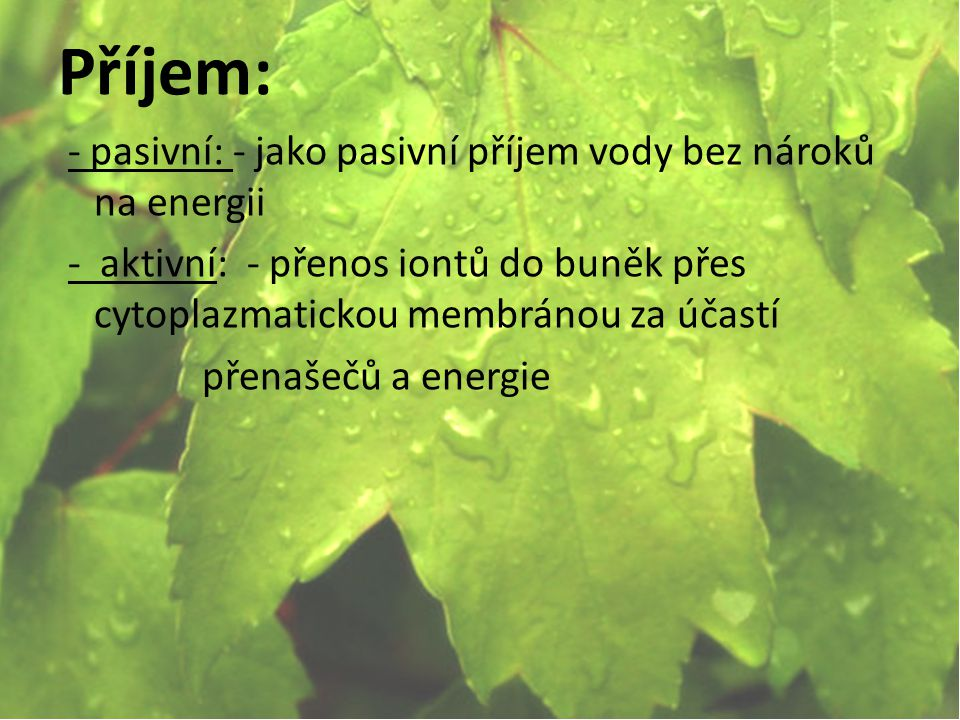 Příjem: - pasivní: - jako pasivní příjem vody bez nároků na energii