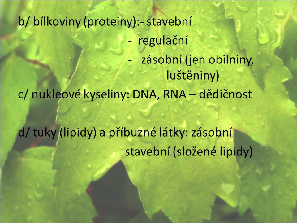 b/ bílkoviny (proteiny):- stavební