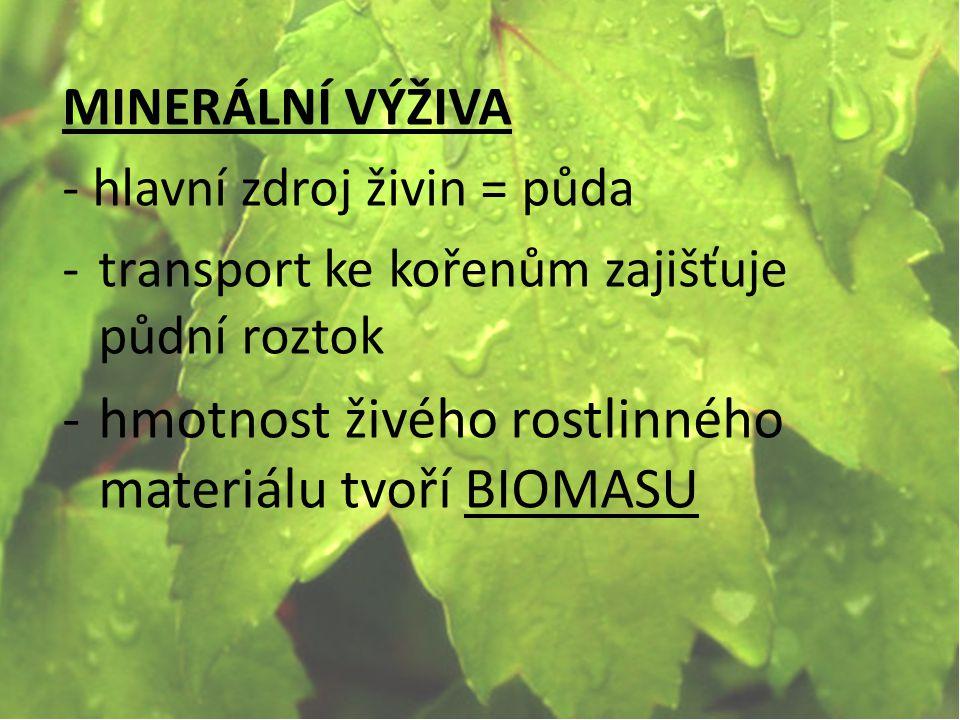 hmotnost živého rostlinného materiálu tvoří BIOMASU