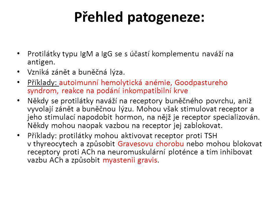 Přehled patogeneze: Protilátky typu IgM a IgG se s účastí komplementu naváží na antigen. Vzniká zánět a buněčná lýza.