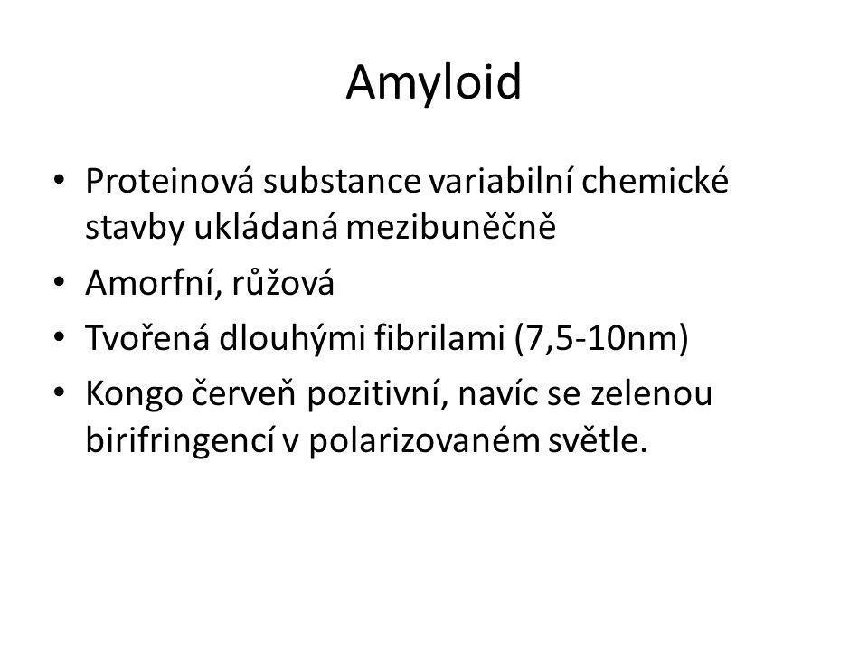 Amyloid Proteinová substance variabilní chemické stavby ukládaná mezibuněčně. Amorfní, růžová. Tvořená dlouhými fibrilami (7,5-10nm)