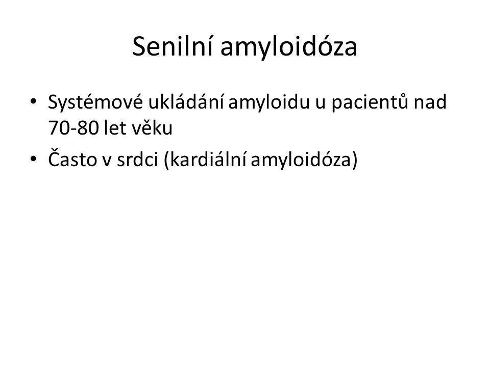 Senilní amyloidóza Systémové ukládání amyloidu u pacientů nad 70-80 let věku.