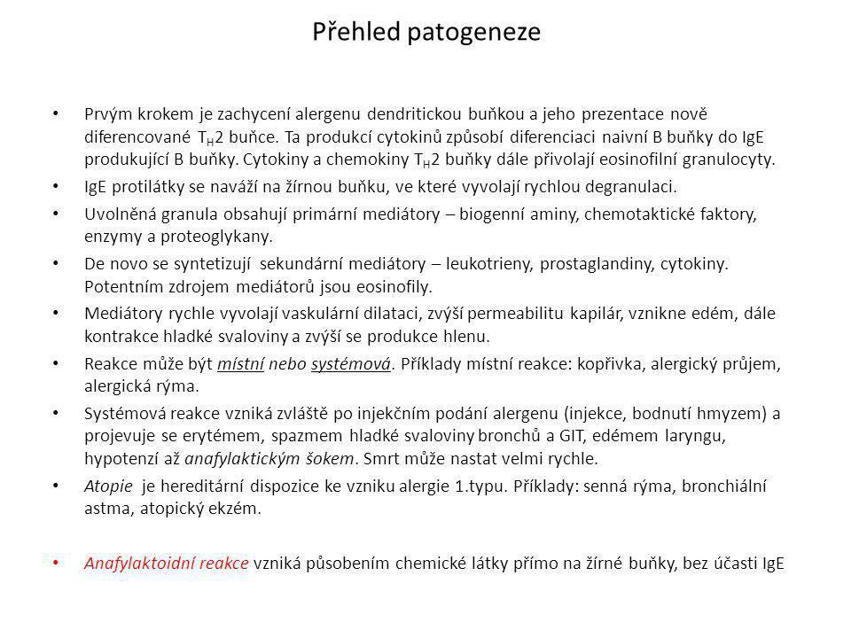 Přehled patogeneze