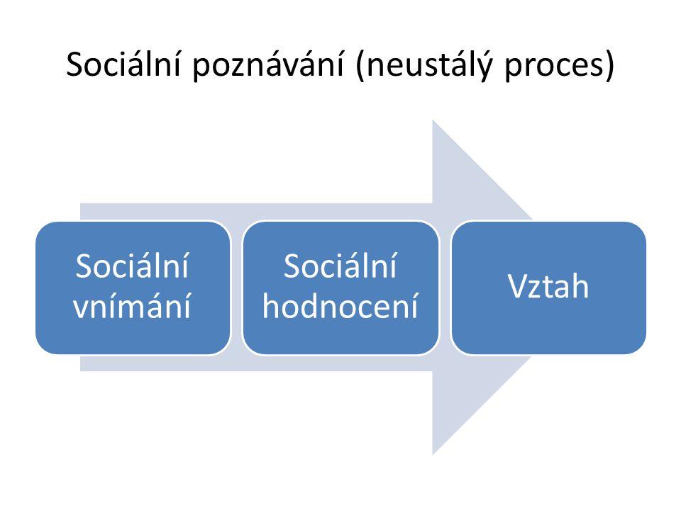 Sociální poznávání (neustálý proces)