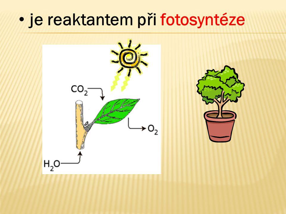 je reaktantem při fotosyntéze
