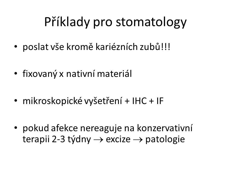 Příklady pro stomatology
