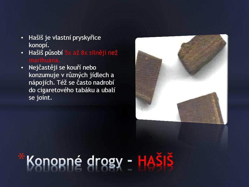Konopné drogy - HAŠIŠ Hašiš je vlastní pryskyřice konopí.