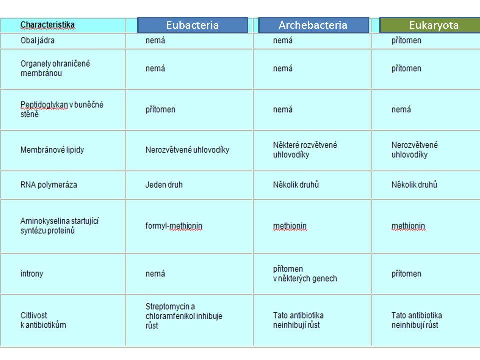 Eubacteria Archebacteria Eukaryota