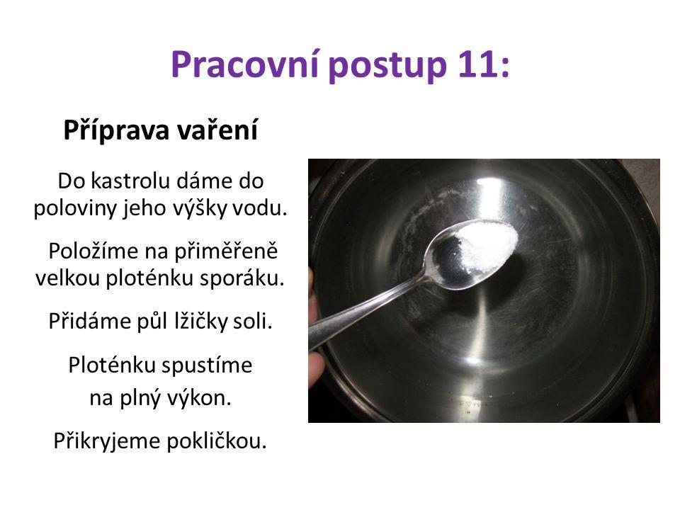 Pracovní postup 11: Příprava vaření