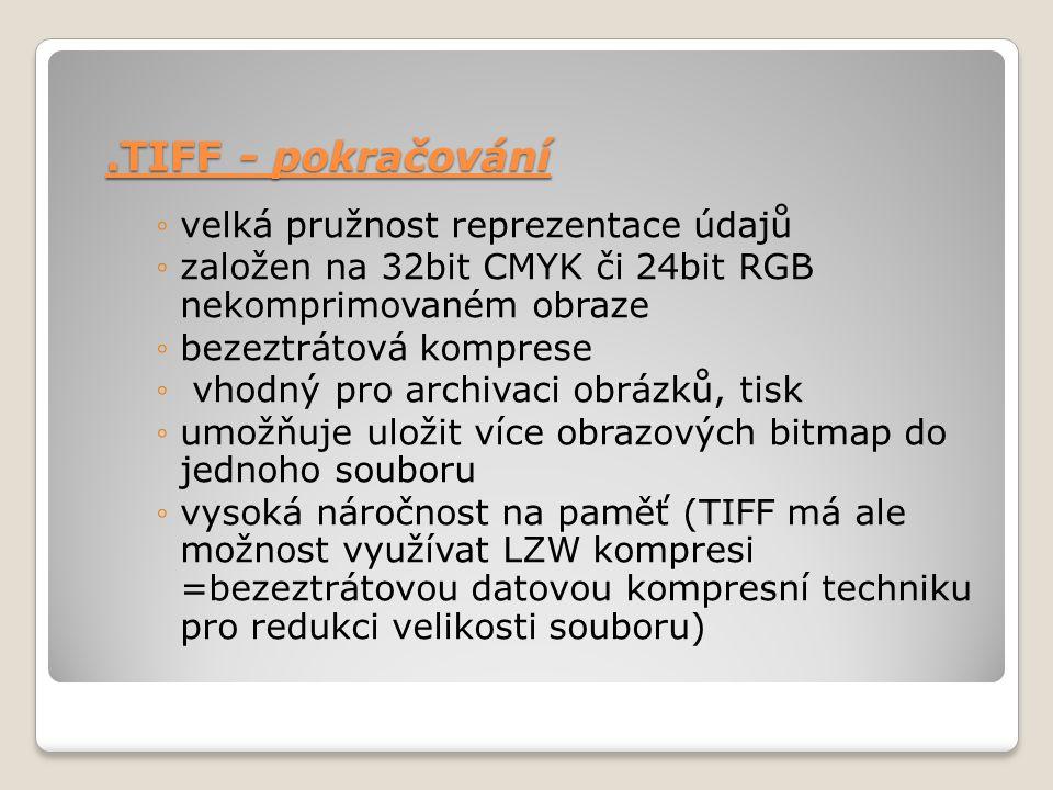 .TIFF - pokračování velká pružnost reprezentace údajů