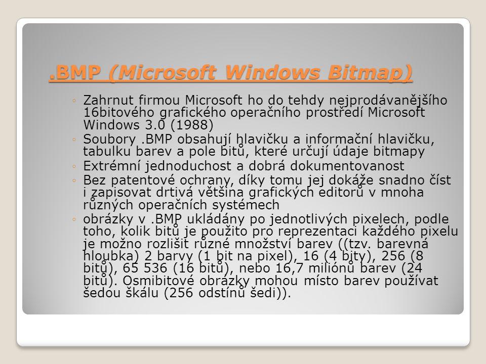 .BMP (Microsoft Windows Bitmap)