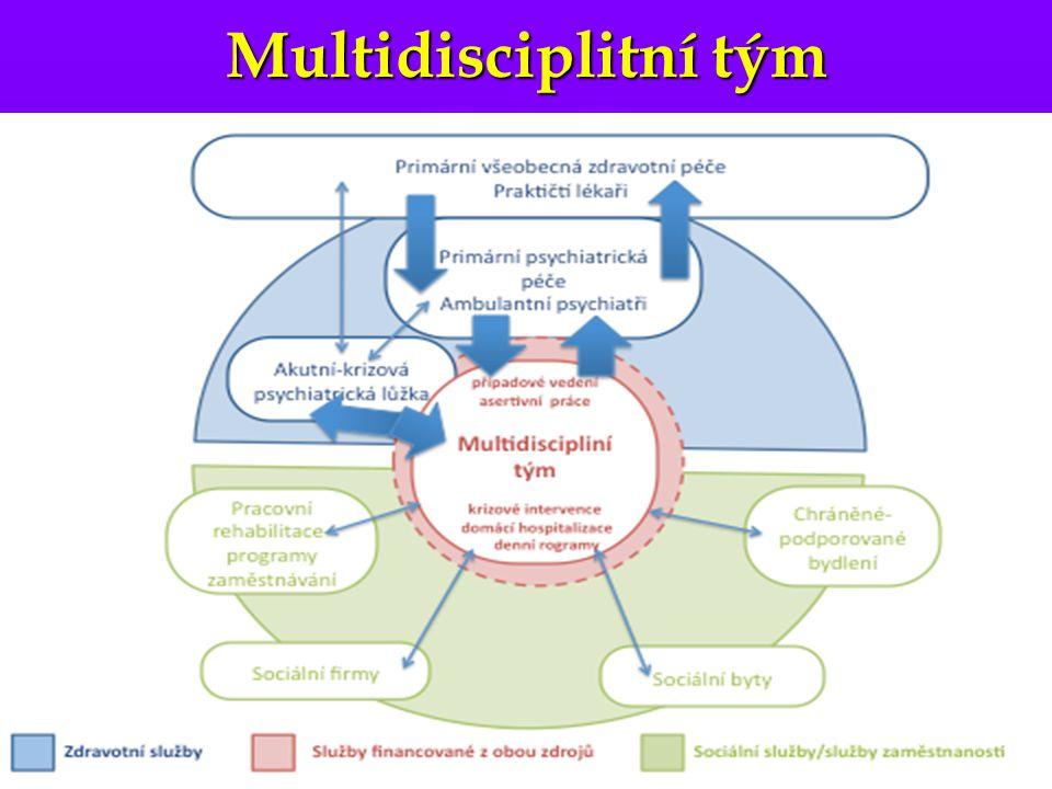 Multidisciplitní tým