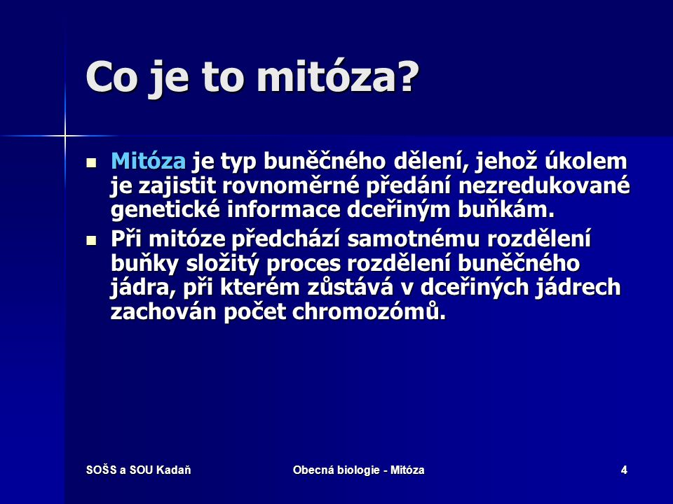 Obecná biologie - Mitóza