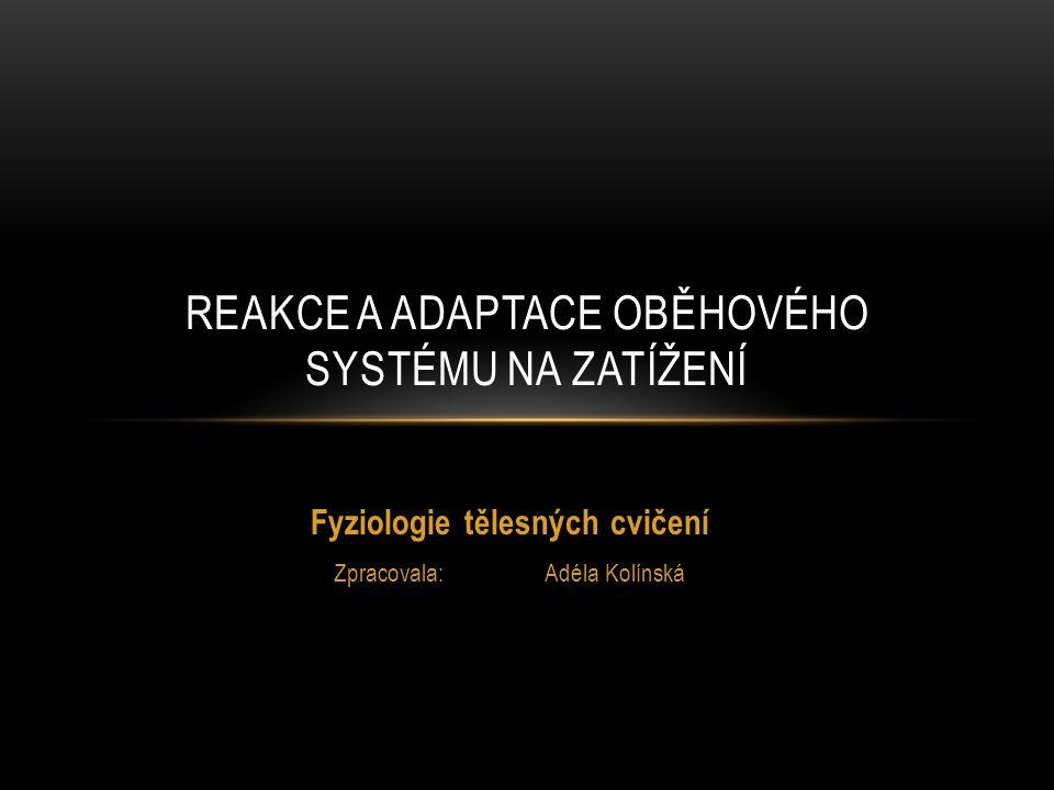 Reakce a adaptace oběhového systému na zatížení