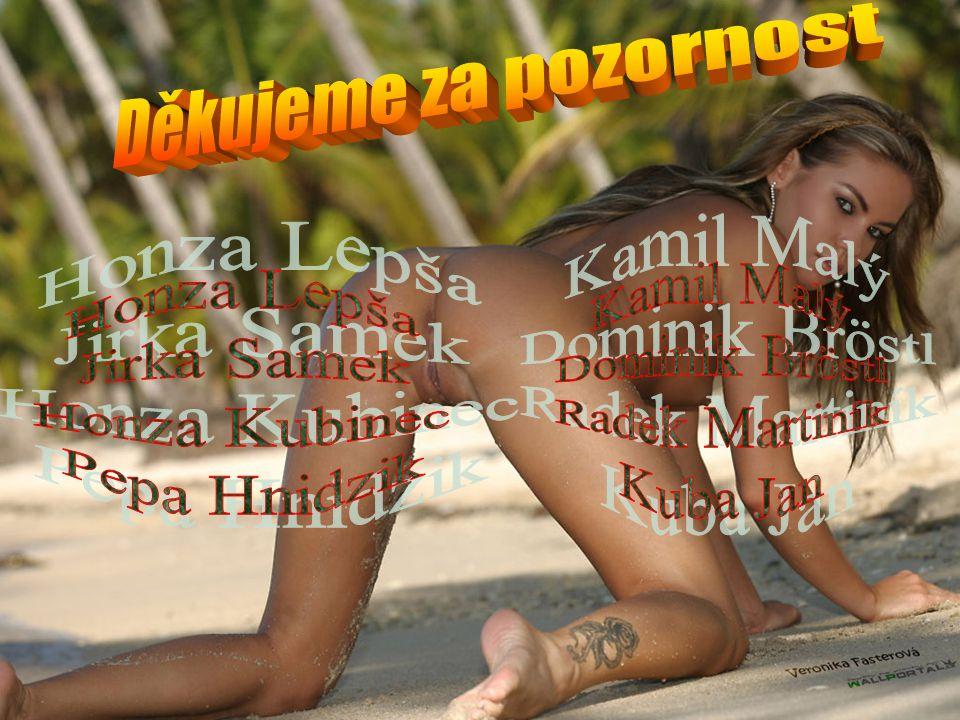 Děkujeme za pozornost Kamil Malý. Dominik Bröstl. Radek Martiník. Kuba Jan. Honza Lepša. Jirka Samek.