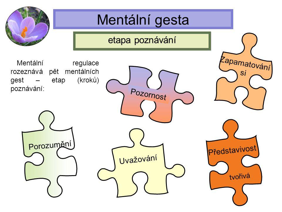 Mentální gesta etapa poznávání Zapamatování si Pozornost Porozumění