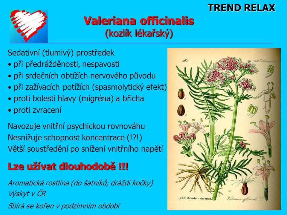 Valeriana officinalis (kozlík lékařský)