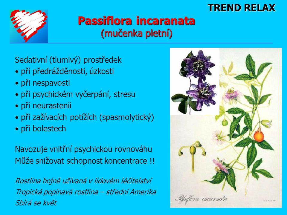 Passiflora incaranata (mučenka pletní)