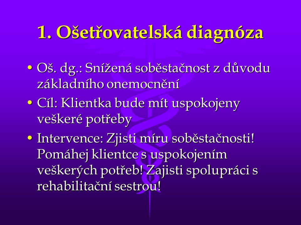 1. Ošetřovatelská diagnóza