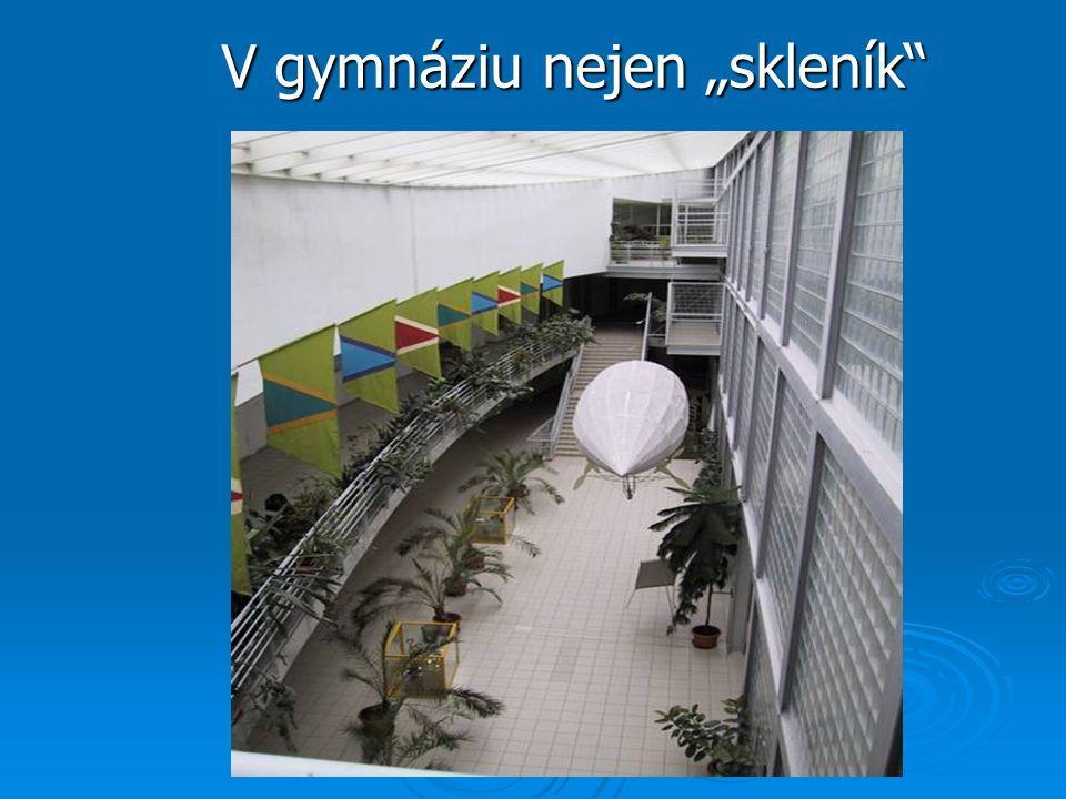 """V gymnáziu nejen """"skleník"""