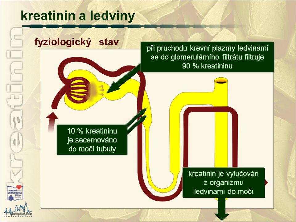 kreatinin a ledviny fyziologický stav