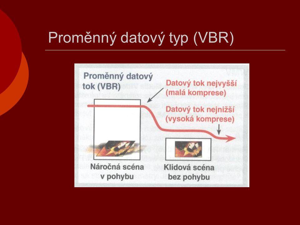 Proměnný datový typ (VBR)