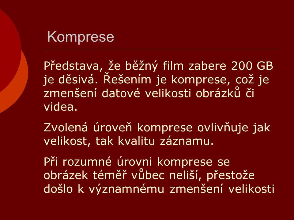 Komprese Představa, že běžný film zabere 200 GB je děsivá. Řešením je komprese, což je zmenšení datové velikosti obrázků či videa.